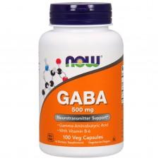GABA NOW 500mg 100 Veg Caps