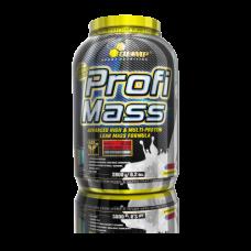Profi Whey Mass 2,8kg